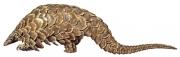 Pangolin /  Scaly Anteater (Manis Temminicki)