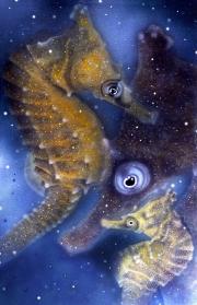 Seahorse Dreaming